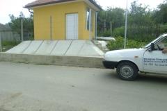 Barlea1